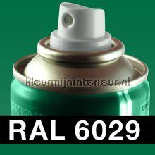 Spuitbus RAL 6029 Munt Groen