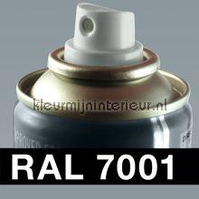 Spuitbus RAL 7001 Zilvergrijs