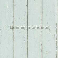 Hout in mintkleur
