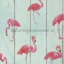 Hout in mintkleur met flamingos papel de parede Rasch madeira