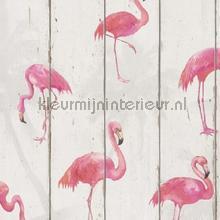 Hout in neutraal wit met flamnigos papel de parede Rasch madeira