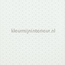 Klein circulair patroon met relief wit