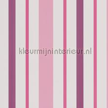 Roze strepen