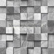Kops houten balkjes grijs papel de parede Esta home madeira