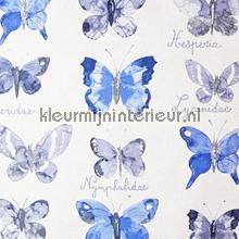 Vlinder flora