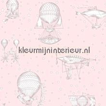 Luchtvaartuigen roze