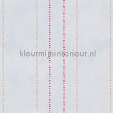 Stippelstreepjes pastelblauw rood