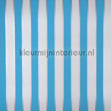 Moomin stripes
