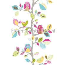Colorful owls and birds sticker interieurstickers AS Creation Baby Peuter