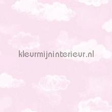 Luchtige wolkjes roze
