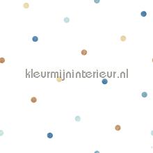 Overal blauwe en beige puntjes