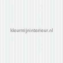 Streep 6 mm grijsblauw wit