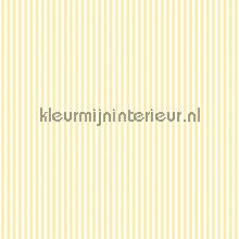 Streep 6 mm geel wit