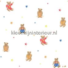 Knuffelberen en sterren