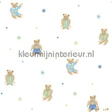 Knuffelberen en sterren blauw groen
