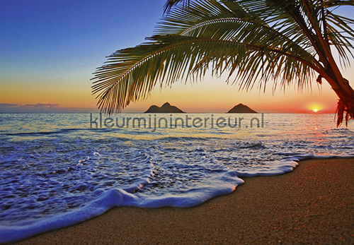 Behang Kinderkamer Strand : Pacific Sunrise Zon - Zee - Strand ...