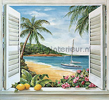 Tropical window