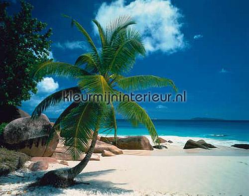 Behang Kinderkamer Strand : Beach Zon - Zee - Strand fotobehang