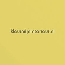 Licht geel glans