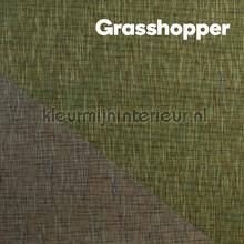 Grasshopper behang