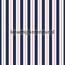 Stripes - marine