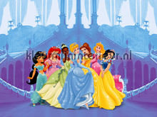 Disney prinsessenfeest