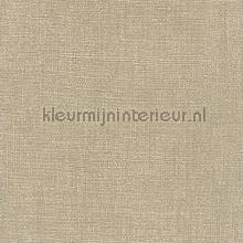 Cappucini metallic weving