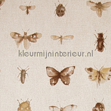 Insects beige