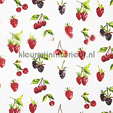 SUMMER BERRIES Watercolour