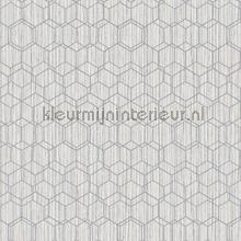 Edward van Vliet woven hexagons