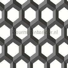 3d hexagon