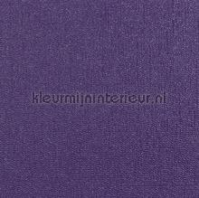 Glitterati Plain - Purple
