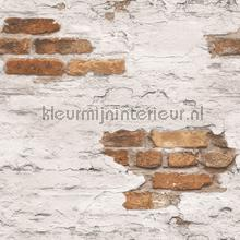 Plastered brick wall