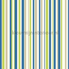 Earn your stripes - blue and green