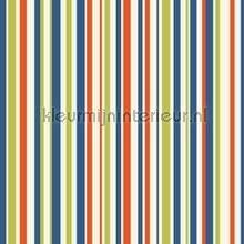 Earn your stripes - multi