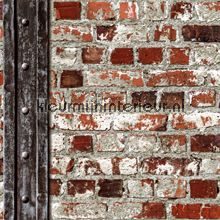 stenen behang beton behang behang, Meubels Ideeën
