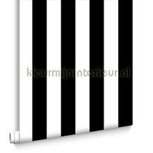 Monochrome Stripe