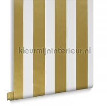 Gold Stripe Vlies