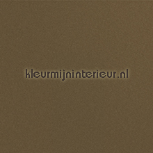 Painted plain brownish wallpaper