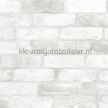 Bricks light grey