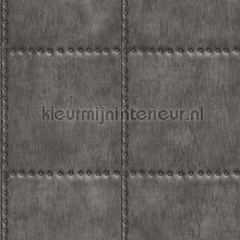 Metal plate with nails darkgrey