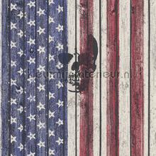 American stripes stars and skull