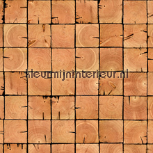 Scrapwood wallpaper PHE-09