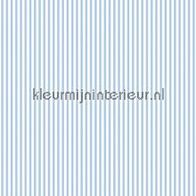 Baby Blauw Behang.Streep 6 Mm Blauw Wit Baby Peuter Behang