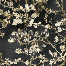 Almond Blossom black