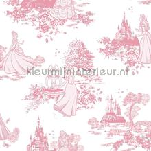 Pricess Pink Toile