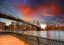 New York bridges Sky line