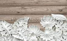 Flowers on wooden planks