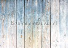 Wooden wall blue and grey