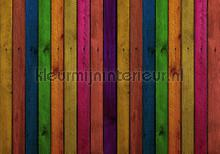 Wood wall in bright colors